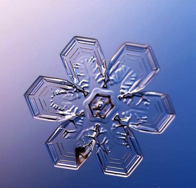 显微摄影下的雪花美轮美奂