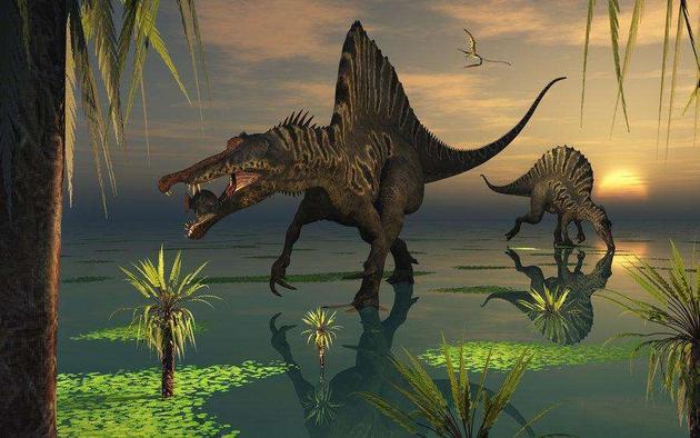 海洋是恐龙探索的另一个栖息领域,考古学家发现棘龙曾在江河口环境涉猎水栖生物,长有盔甲的甲龙骨骼化石也存在于海洋沉积层中,它们很可能在海岸线附近生活。或许棘龙和甲龙会沿着哺乳动物鲸鱼的进化路径发展,能完全在海洋中生存下来,它们也有可能返回陆地产卵,幼崽在岸边陆地孵化之后再回到海洋之中,其繁殖方式类似于鱼龙和蛇颈龙。