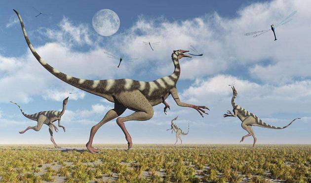 如果植物进化像现代环境继续进行,那么食草恐龙必定会主要以开花植物为食。考虑到开花植物更容易消化,或许食草恐龙的体形会逐渐缩小,那么中生代时期巨型恐龙将会消失。