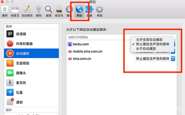 """Safari偏好设置中添加了""""网站"""""""