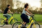 共享单车们美好的愿景背后正在遭遇厄运?
