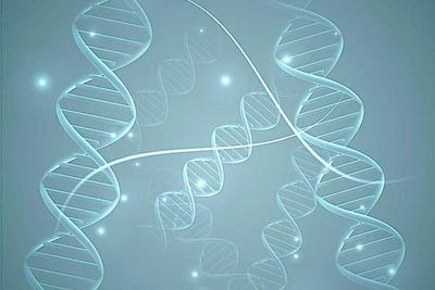 FDA初步放行Spark眼部基因疗法
