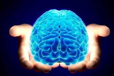 """新研究称人脑通过脑内淋巴管""""排污"""""""