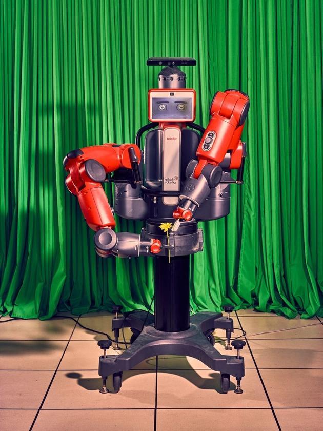 """机器人""""温妮""""正在撕花瓣"""