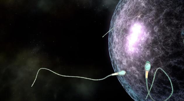 美国科学家用《星球大战》的创意制作了一个精子与卵子结合的科学视频