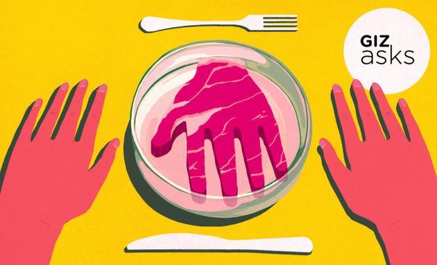 如果有合成的人肉可供选择,你吃还是不吃?