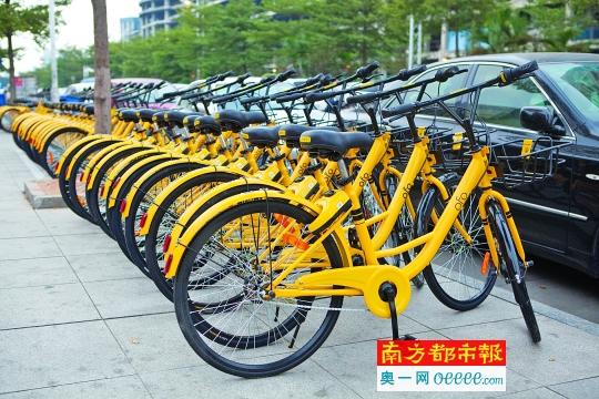 11月8日,沙井地铁站附近,整齐摆放着一排崭新的黄色共享自行车。南都记者霍健斌摄