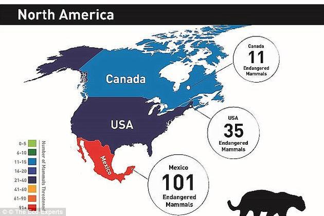 加拿大现有11种濒危生物,包括某些鼠类、蝙蝠和狼。美国则有35种,包括巨型袋鼠大鼠(giant kangaroo rat)、印第安纳蝙蝠(Indiana myotis bat)、黑足鼬、豚鹿等。