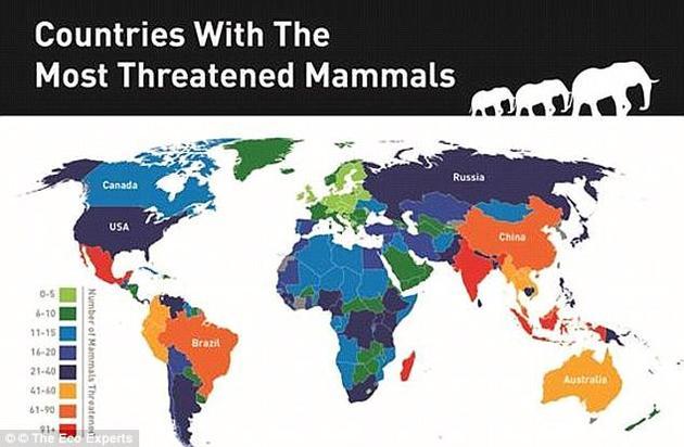 2015年,Eco Experts公司利用世界银行世界去森林化发展指标和生物多样性数据,绘制了全球濒危哺乳动物分布图。