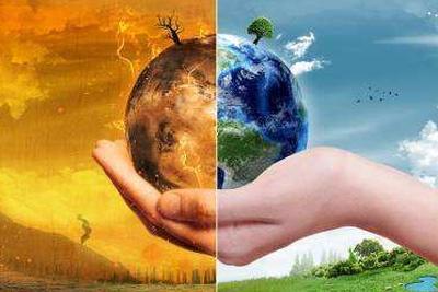"""科研报告:全球变暖加剧 植物""""吸碳""""能力转弱"""