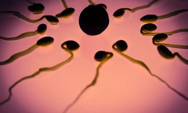 长期焦虑和压力:或会对精子及其后代产生持续影响RNA