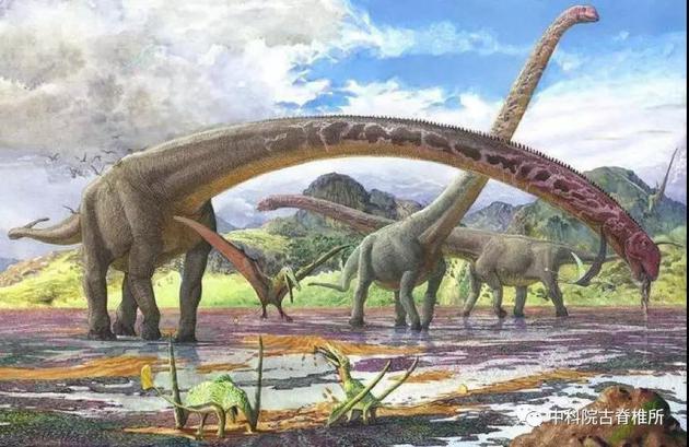 体型巨大的蜥脚类恐龙,是代表性的巨型化的恐龙类群  图源自:网络