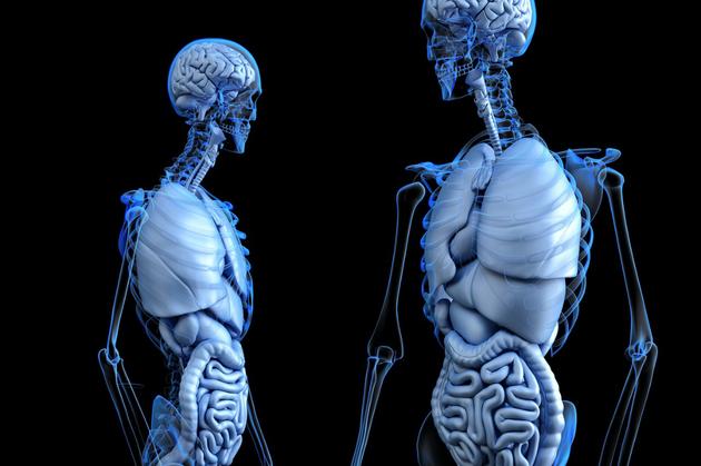 吃也可以影响你的内心想法?肠道细菌可影响大脑意识