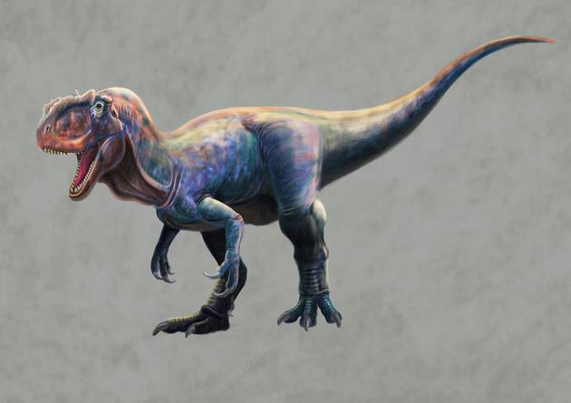 陕西延安发现侏罗纪肉食龙足迹 推测体长可达8米