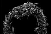腾讯微视:一条自我衔尾的蛇