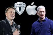 """苹果为什么要收购""""特斯拉""""?"""