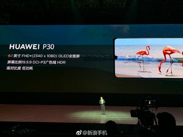 P30采用6.1英寸屏