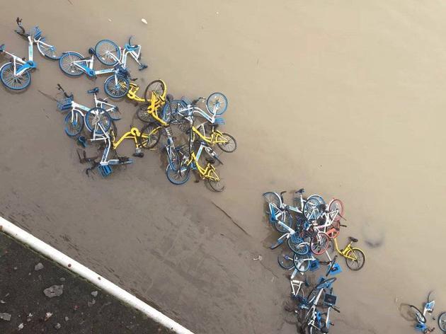 被扔到河里的共享单车