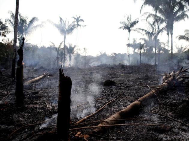 8月20日,巴西亚马逊州一片丛林被伐木者和农民烧毁