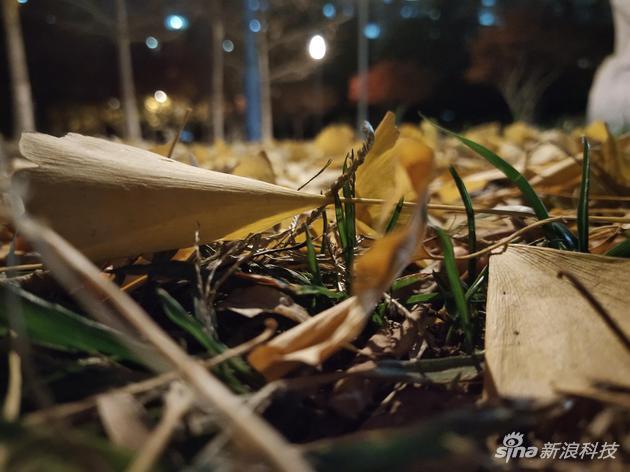 2016澳门赌场现状|亚洲十大恐怖片,半夜不敢上厕所可不怪我