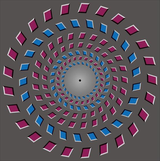 图 3 著名的Pinna 旋转运动错觉。当人注视图片中心黑点,头部靠近(或远离)屏幕时,会很明显地感受到两个?#19981;?#22312;分别?#38405;?#26102;针和顺时针(或顺时针和逆时针)方向旋转,但事实上?#19981;凡?#27809;有任何物理移动。(王伟组 绘制)