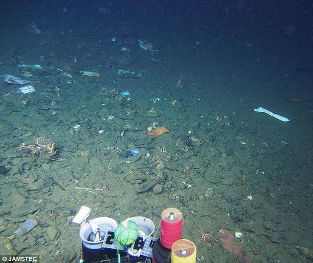这片海底看起来就像垃圾填埋场,但实际上是日本近海的海底,水深为581米。