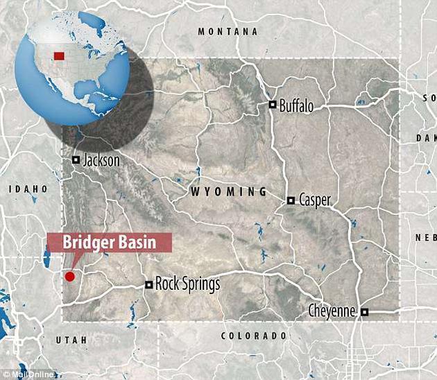 研究中所用的化石标本是在150年前在美国怀俄明州的布里吉尔凹地(Bridger Basin)。