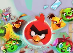 《愤怒的小鸟》惹怒法官