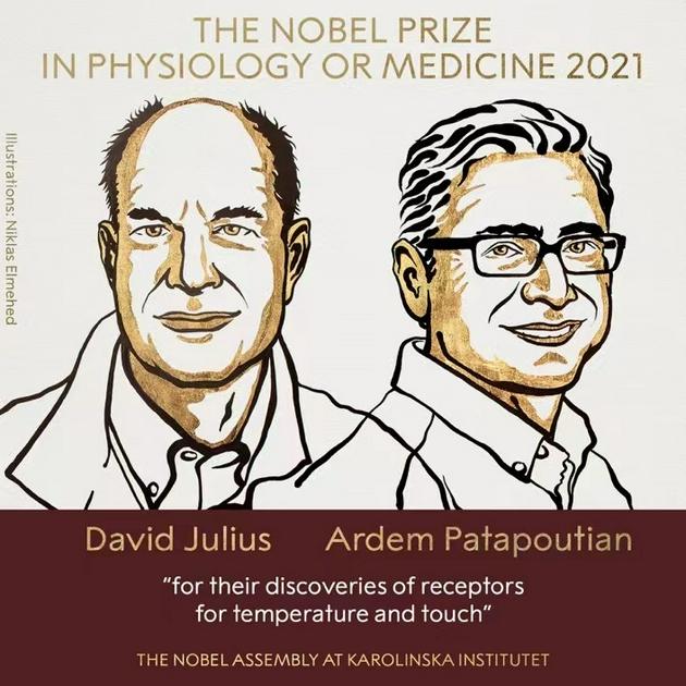 2021诺贝尔生理学或医学奖揭晓:温度和触觉感受器研究获奖