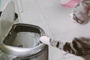 智能垃圾桶体验如何?