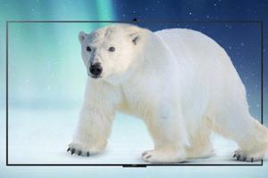 华为两款V系列高端智慧屏发布
