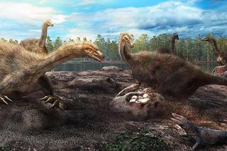 有娃一起养?恐龙可能也这么想