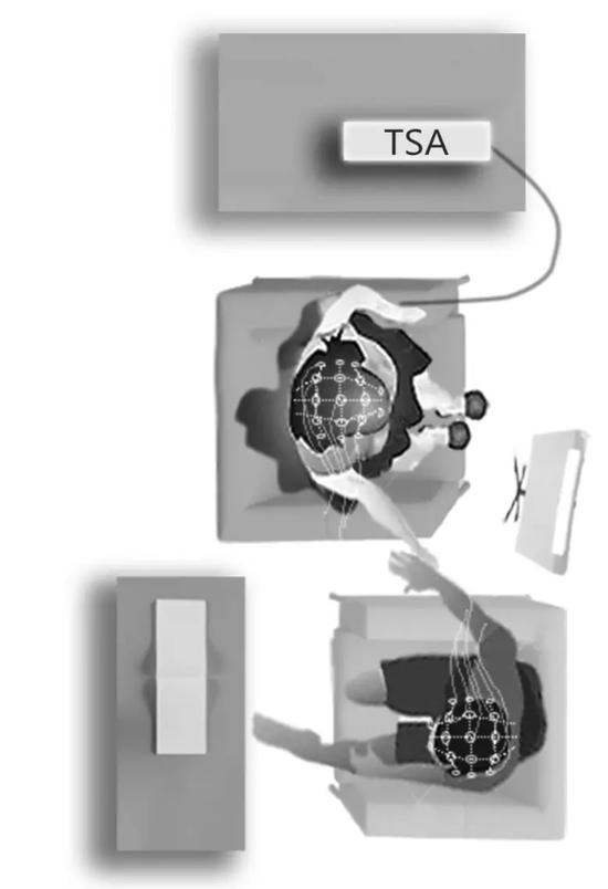 上方为女性,下方是男性。二者的脑电波信号同步采集。