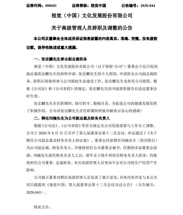 视觉中国:副总裁张宏麟辞职 刘楠接任