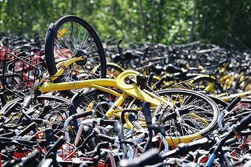 共享单车第一镇的衰落