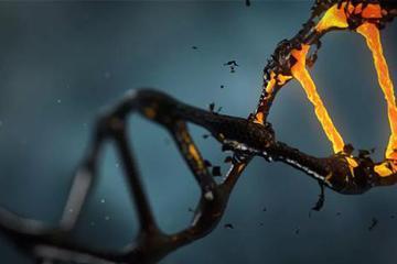 """我们连""""转基因食品""""都没整利索 """"转基因人""""就来了"""