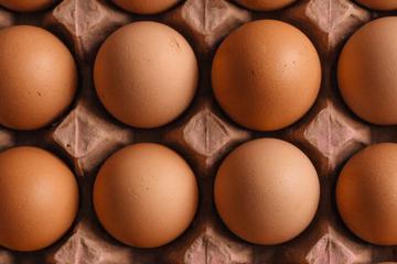 人造鸡蛋来袭?这家公司拯救一万亿鸡蛋供求