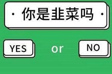 """""""对韭当割""""孙宇晨"""