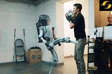 机器人反击人类真相