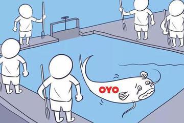 OYO入华11个月,是诵经的和尚还是送肉的鲶鱼