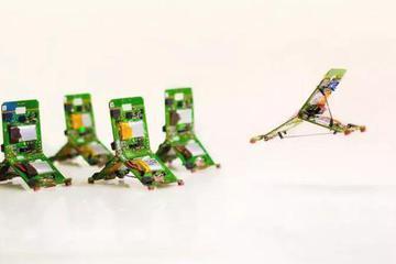 蚂蚁机器人弹跳力惊人
