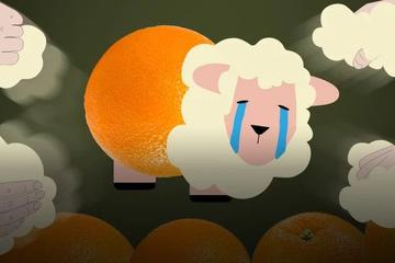 一夜撸700万,羊毛党不光薅羊毛,还吃羊肉吸羊血