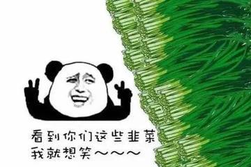 """被割韭菜的美股股民:""""别买奇怪的中国公司股票!"""""""