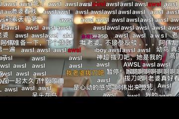 AWSL成B站年度弹幕