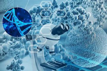 我们如何用AI来研发新药?