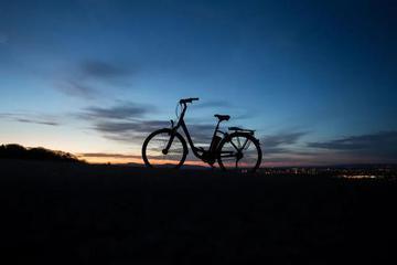 走下沉、发补贴、拼电池,巨头们的共享电单车生意还好吗?