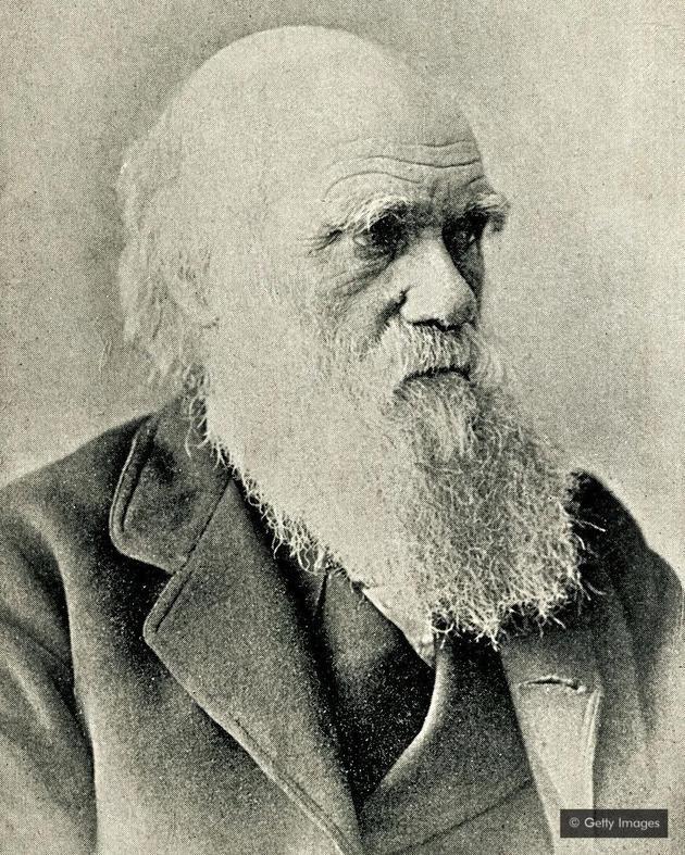 达尔文在1871年写给朋友的一封短信中介绍了自己的理论。
