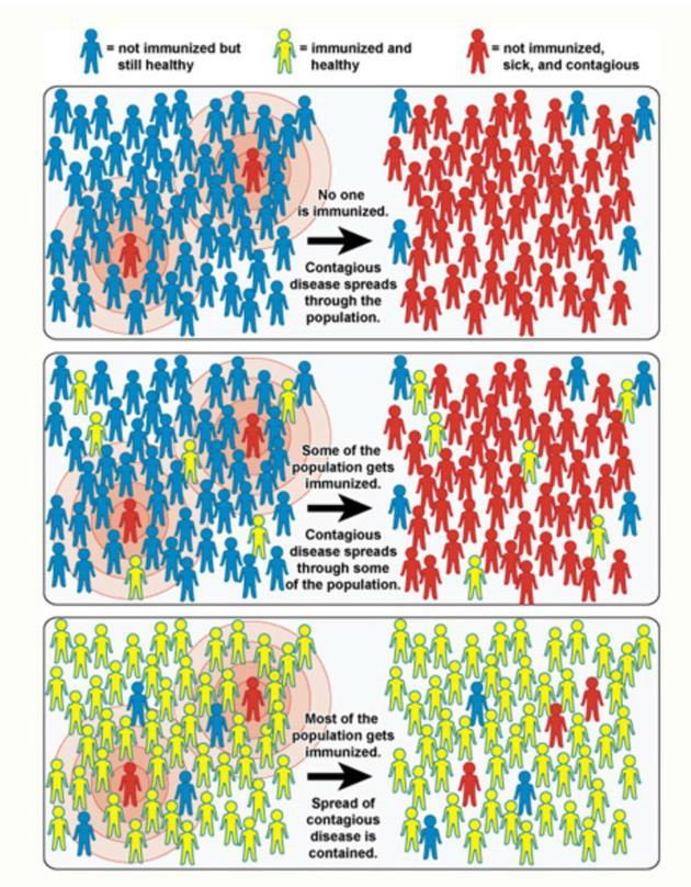科学大家| 是否该接种HPV疫苗:辩证法分析免疫系统