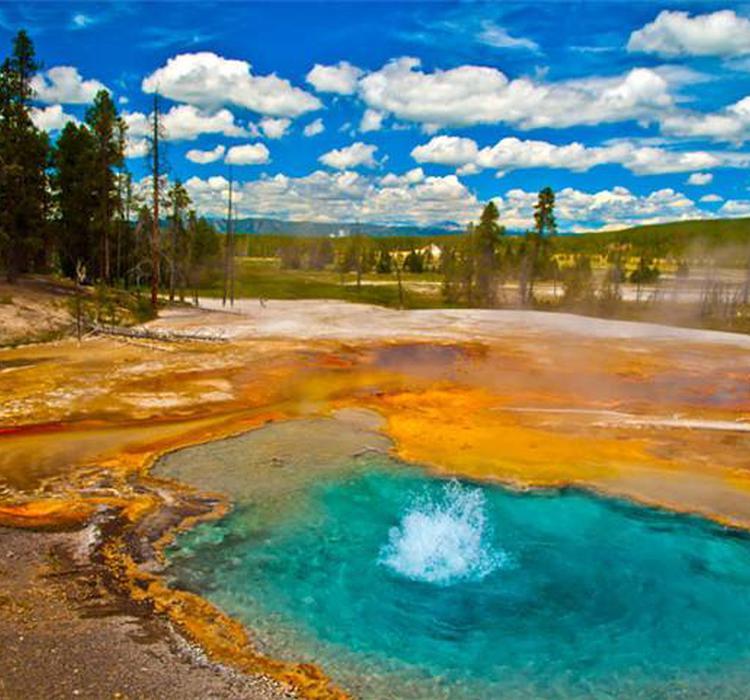 人类活动改变了北美生态系统