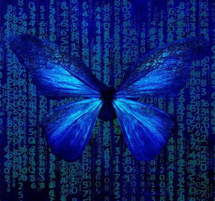 奇异的量子世界里,连蝴蝶效应都不存在